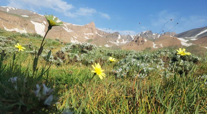 صعود یک روزه قله علمکوه از مسیر حصارچال، ۲۸ تیر ۹۷